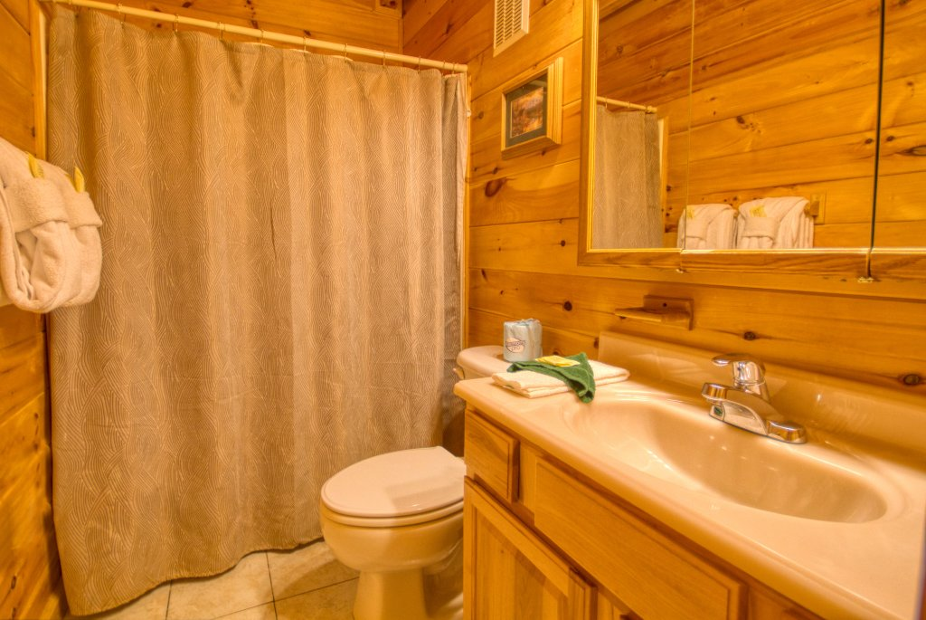 Photo of a Pigeon Forge Cabin named Dare To Bear #238 - This is the twenty-fourth photo in the set.