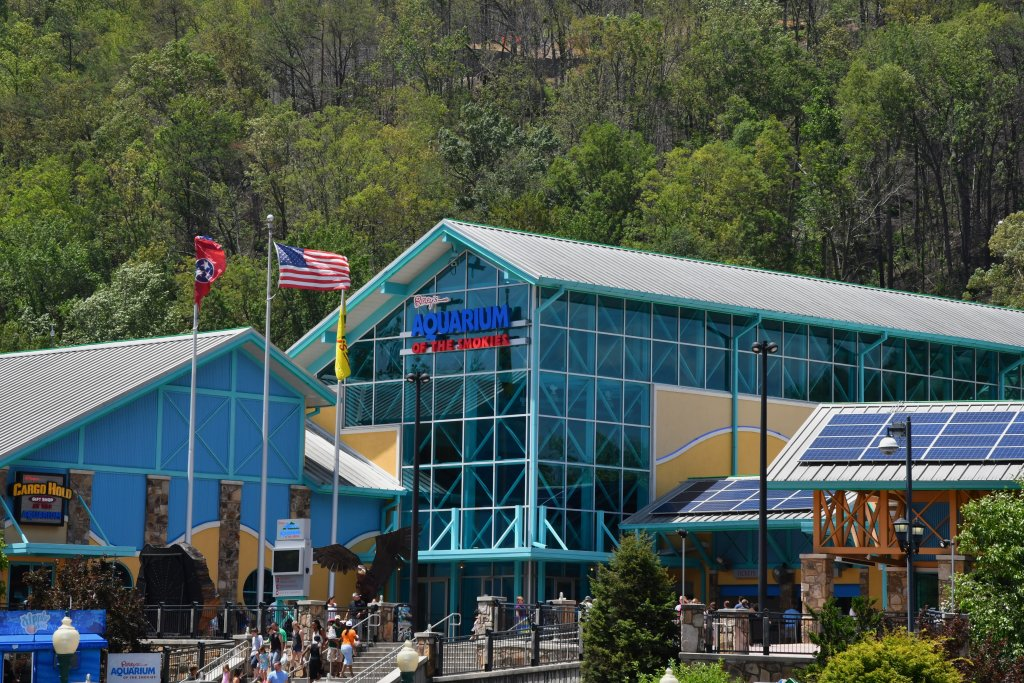 Photo of a Gatlinburg Cabin named Wild Thing #1525 - This is the fifteenth photo in the set.