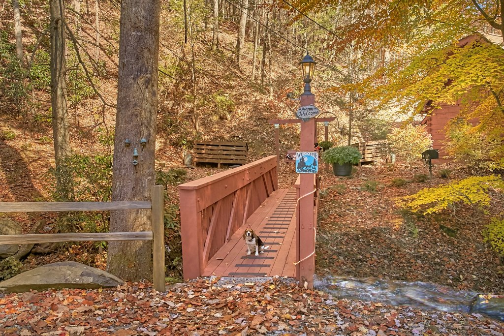 Photo of a Gatlinburg Cabin named Cozy Creek - This is the second photo in the set.