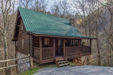 2 Bedroom, 2 Bath Value Cabin For 8 With A Hot Tub. Semi-secluded Near A Stream.