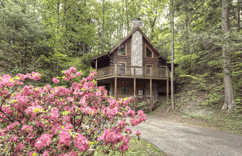 Photo of a Pigeon Forge Cabin named  Treasured Times - This is the two thousand five hundred and seventy-seventh photo in the set.