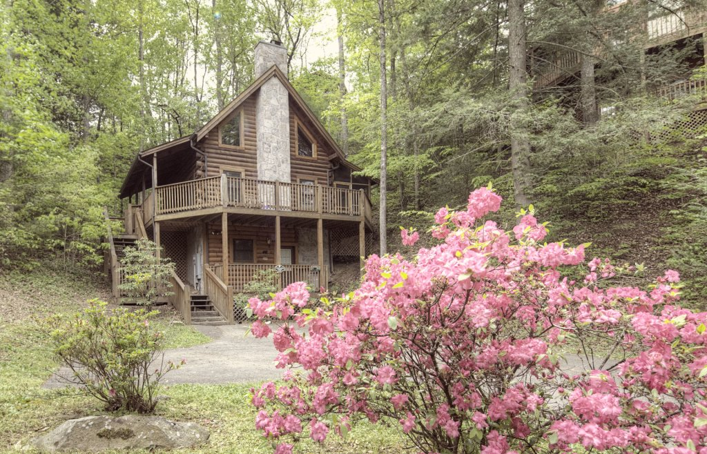 Photo of a Pigeon Forge Cabin named  Treasured Times - This is the one thousand two hundred and sixty-seventh photo in the set.