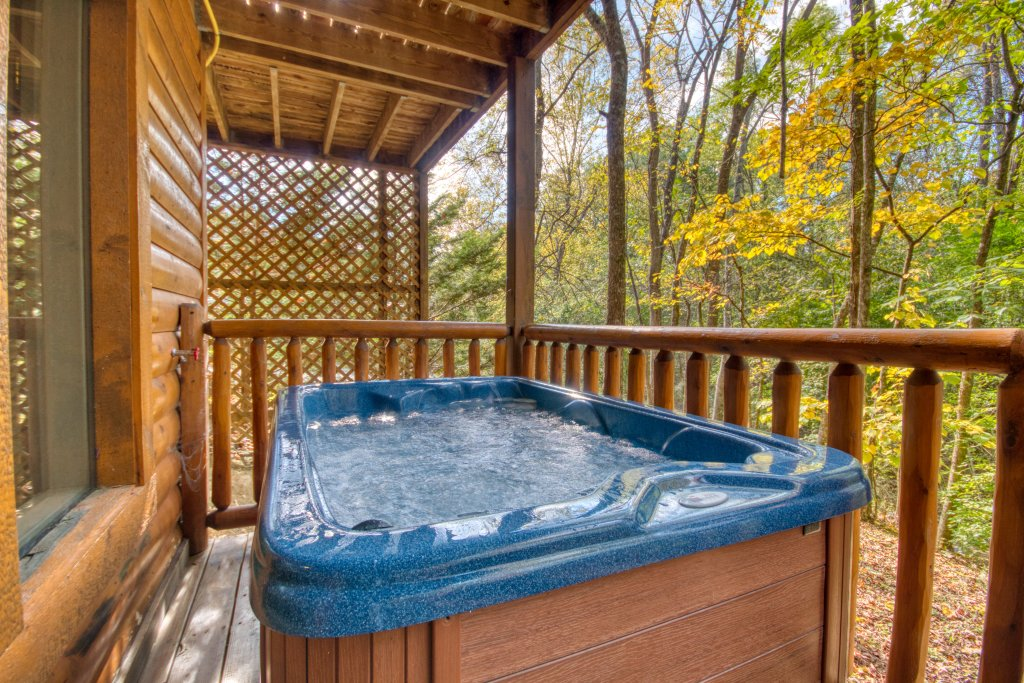 Photo of a Pigeon Forge Cabin named Skinny Dippin' #261 - This is the eighth photo in the set.