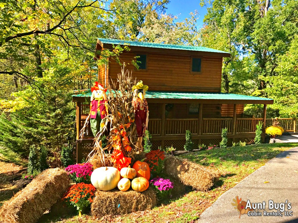 Photo of a Pigeon Forge Cabin named Skinny Dippin' #261 - This is the thirty-second photo in the set.