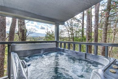 Eastwood, 4 Bedrooms, Hot Tub, Pets, Mountain View, Pool Access, Sleeps 10