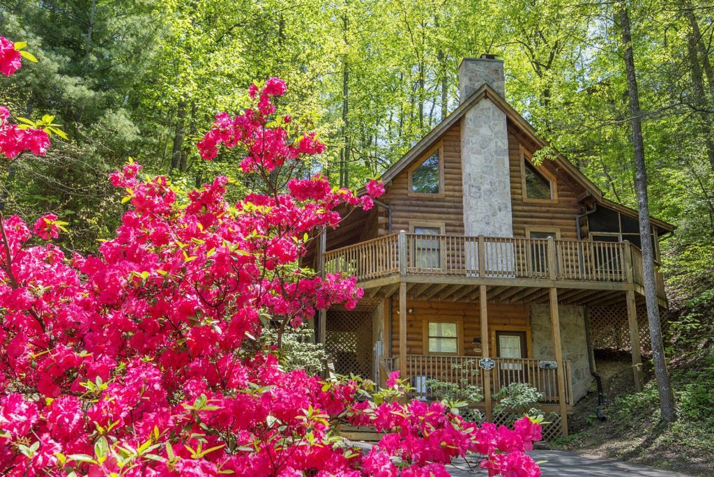 Photo of a Pigeon Forge Cabin named  Treasured Times - This is the seventy-eighth photo in the set.