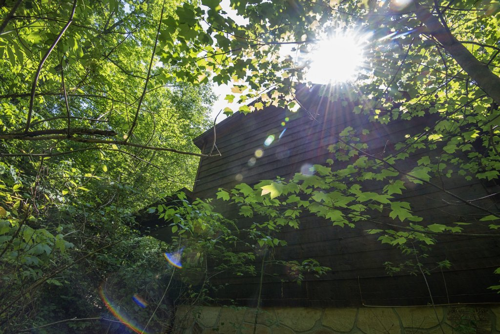 Photo of a Pigeon Forge Condo named  Jalyn's Treehouse - This is the two thousand and fifty-sixth photo in the set.