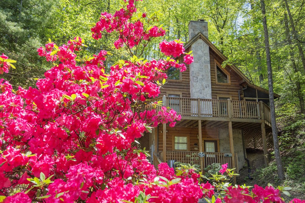 Photo of a Pigeon Forge Cabin named  Treasured Times - This is the one thousand two hundred and seventy-seventh photo in the set.