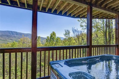On Eagle's Wings, 2 Bedrooms, Sleeps 8, Hot Tub, Theater, Pool Access