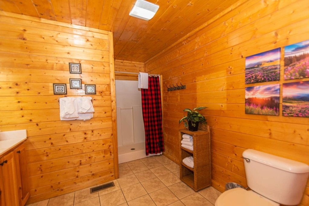 Photo of a Pigeon Forge Cabin named Absolute Dream - This is the fourteenth photo in the set.