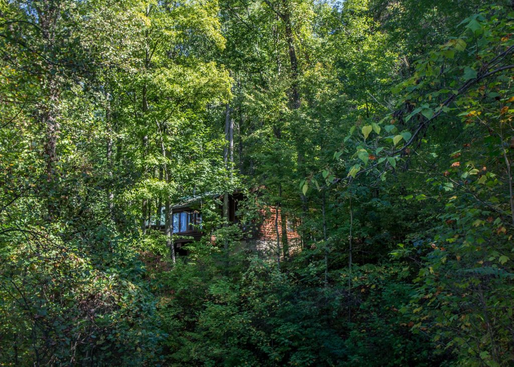 Photo of a Sevierville Cabin named Amazing Grace #25 - This is the thirty-first photo in the set.