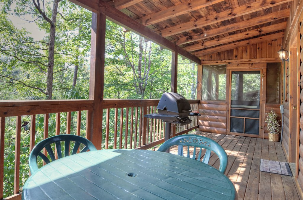 Photo of a Pigeon Forge Cabin named  Palmetto Place - This is the tenth photo in the set.