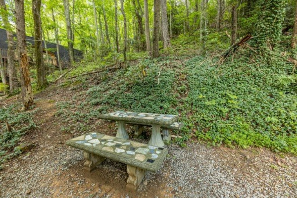Photo of a Gatlinburg Cabin named License To Chill - This is the twentieth photo in the set.