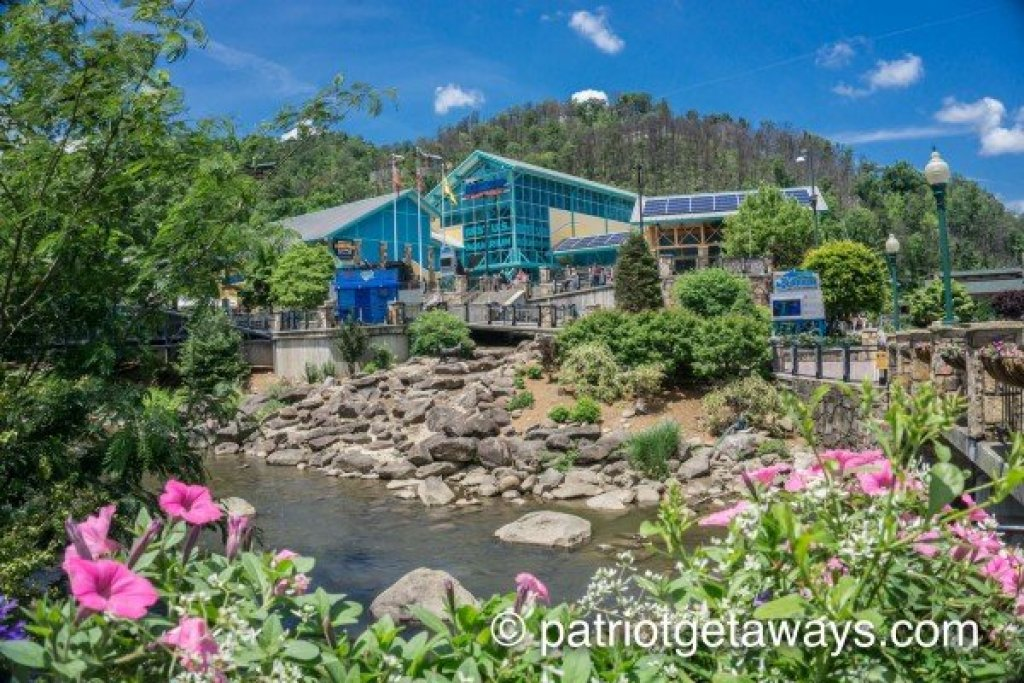 Photo of a Gatlinburg Cabin named Cub's Crossing - This is the twenty-sixth photo in the set.