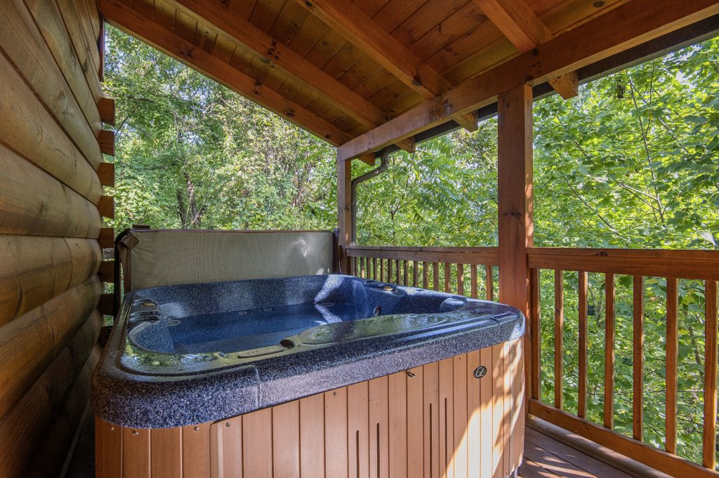 Photo of a Sevierville Cabin named The Wildlife Lodge Fka Wild Hog Inn - This is the thirtieth photo in the set.