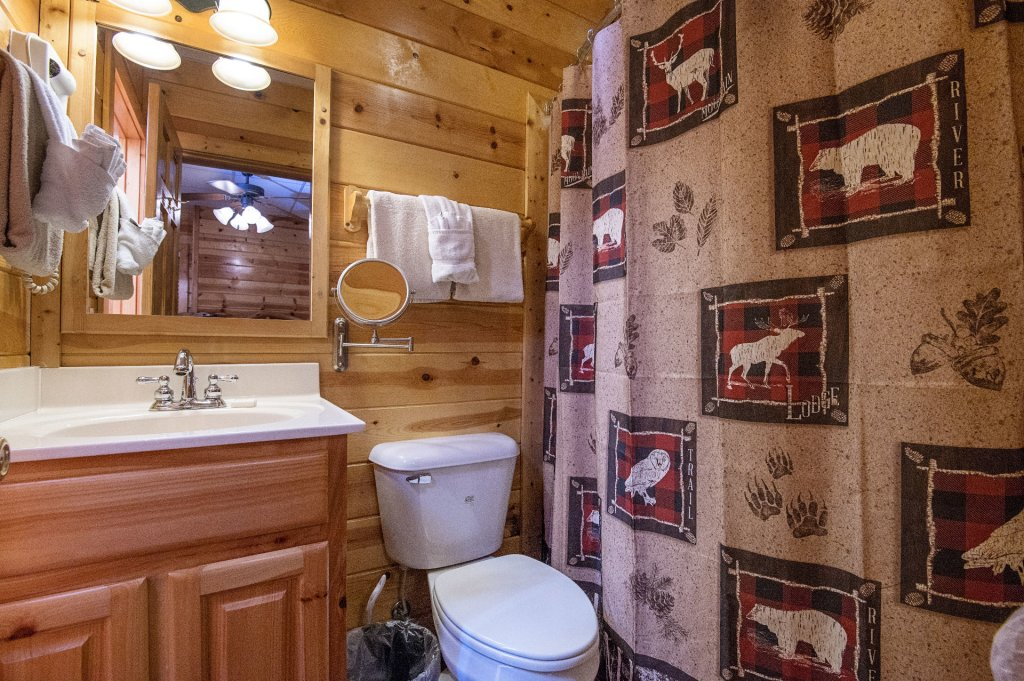 Photo of a Sevierville Cabin named The Wildlife Lodge Fka Wild Hog Inn - This is the twenty-seventh photo in the set.