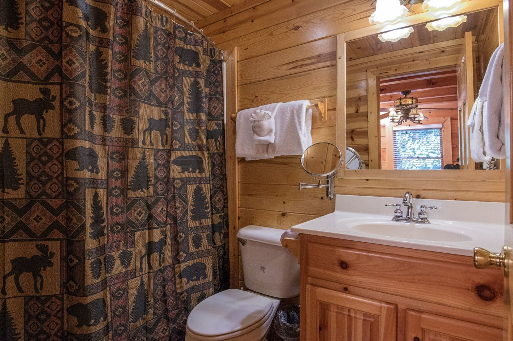 Photo of a Sevierville Cabin named The Wildlife Lodge Fka Wild Hog Inn - This is the twenty-first photo in the set.