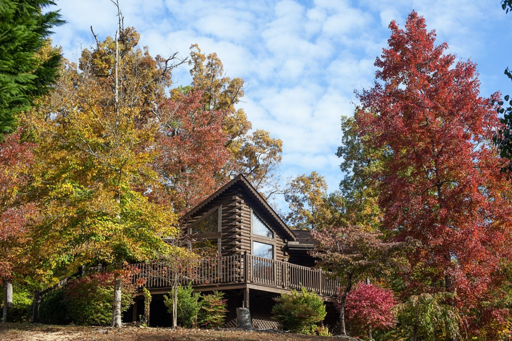 Photo of a Pigeon Forge Cabin named  Robyn's Nest - This is the first photo in the set.