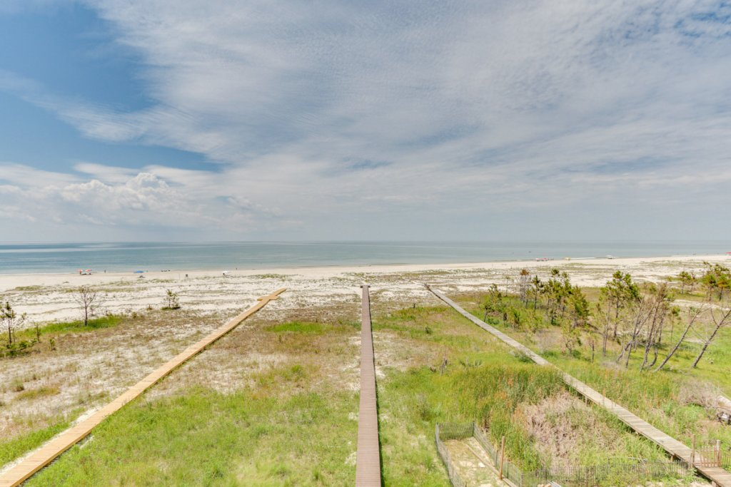 Photo of a Cape San Blas House named Sea's Life - This is the forty-eighth photo in the set.