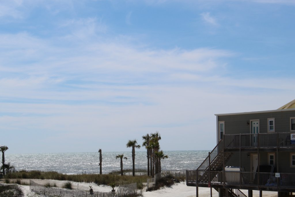 Photo of a Cape San Blas House named Sandy Butts  - This is the forty-first photo in the set.