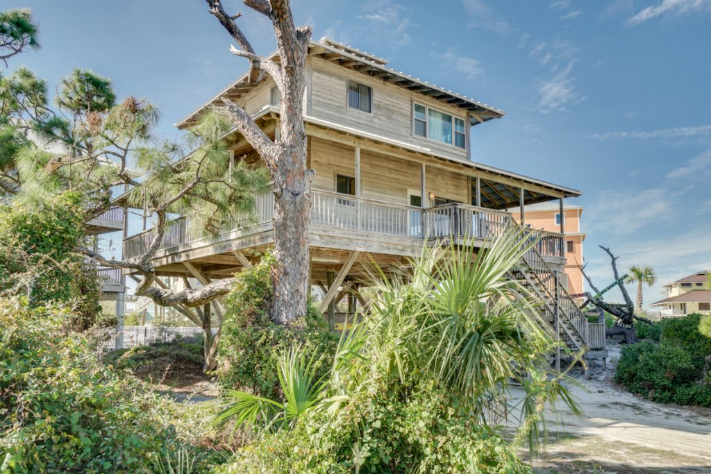 Photo of a Cape San Blas House named Tree House - This is the thirty-fifth photo in the set.