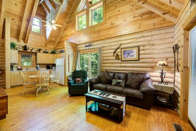 Inviting cabin with pool table, hot tub, fireplace, and pool access