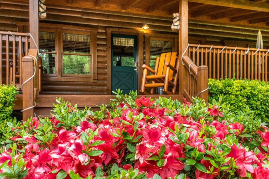 Photo of a Sevierville Cabin named Mountain Dreams 24 - This is the twenty-fourth photo in the set.