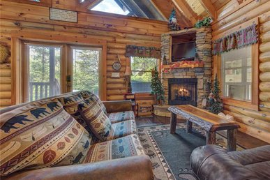 Wilderness Theater And Lodge, 3 Bedrooms, Game Room, Hot Tub, Sleeps 10
