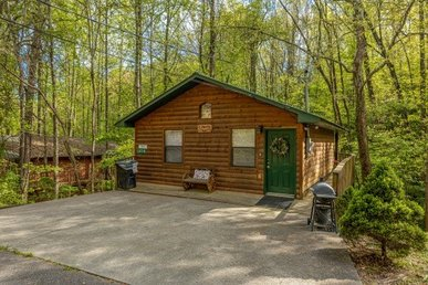 A 2 Bedroom, 2 Bathroom, Deluxe Cabin For 5 With A Home Theater & A Game Room.