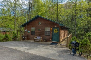 A 2 Bedroom, 2 Bathroom, Deluxe Cabin For 4 With A Game Room & Home Theater.