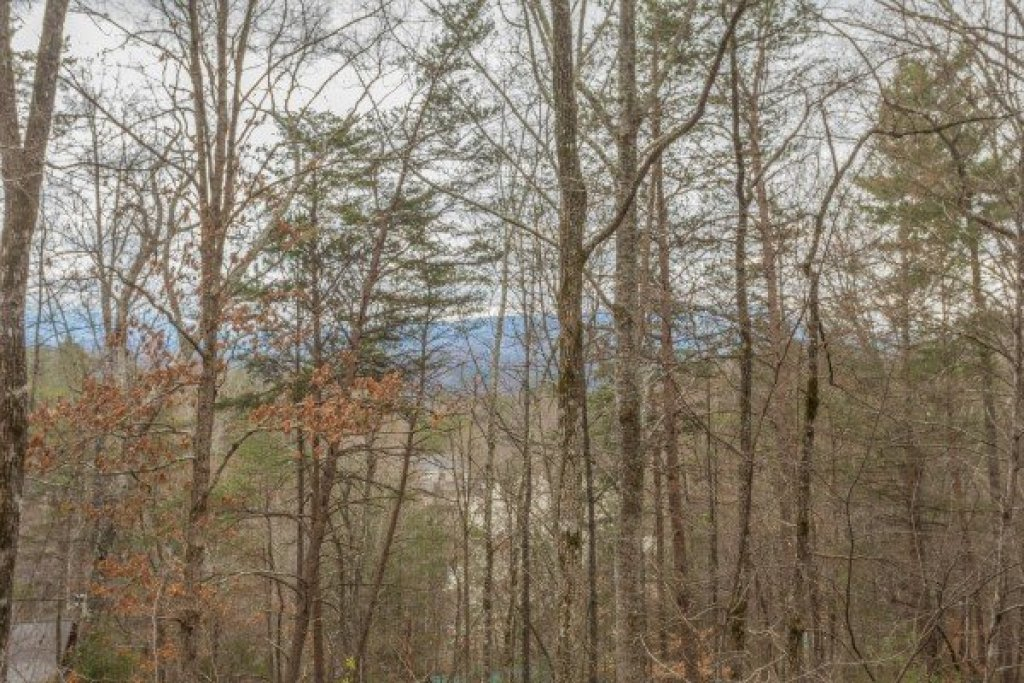 Photo of a Sevierville Cabin named Whispering Pines - This is the twentieth photo in the set.
