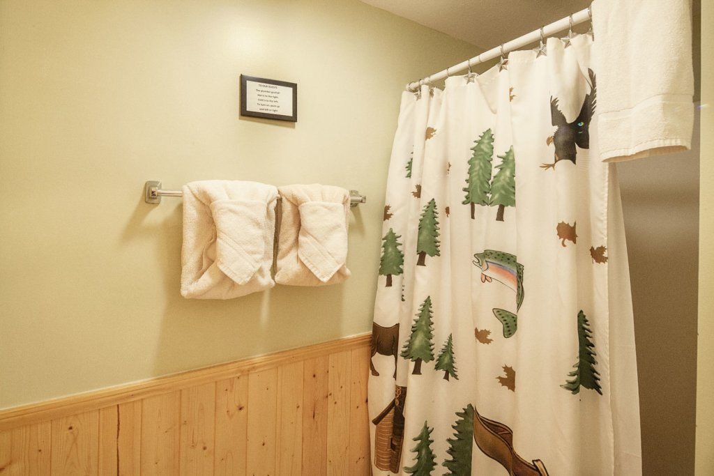 Photo of a Pigeon Forge Cabin named  Bear Naked - This is the thirtieth photo in the set.