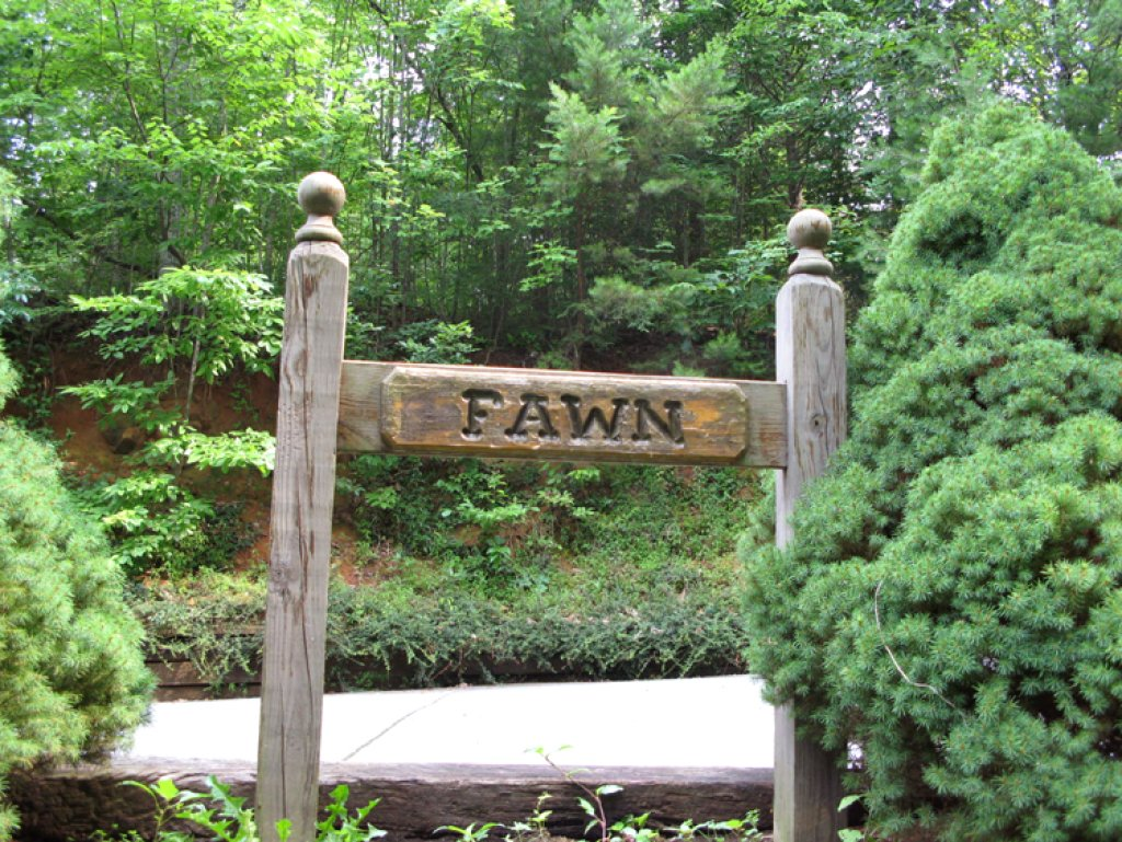Photo of a Gatlinburg Cabin named Fawn Cabin - This is the fourteenth photo in the set.