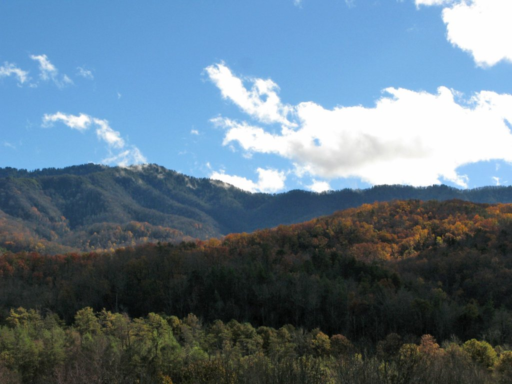 Photo of a Gatlinburg Cabin named Naughty By Nature - This is the twenty-fourth photo in the set.