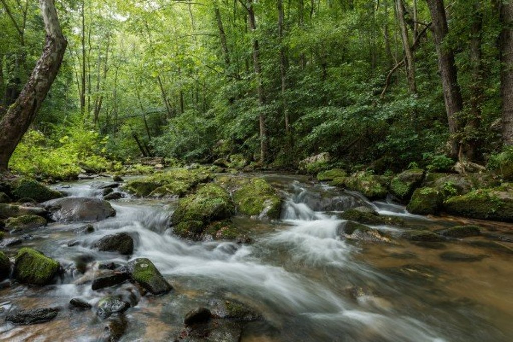 Photo of a Sevierville Cabin named Stream On! - This is the twentieth photo in the set.
