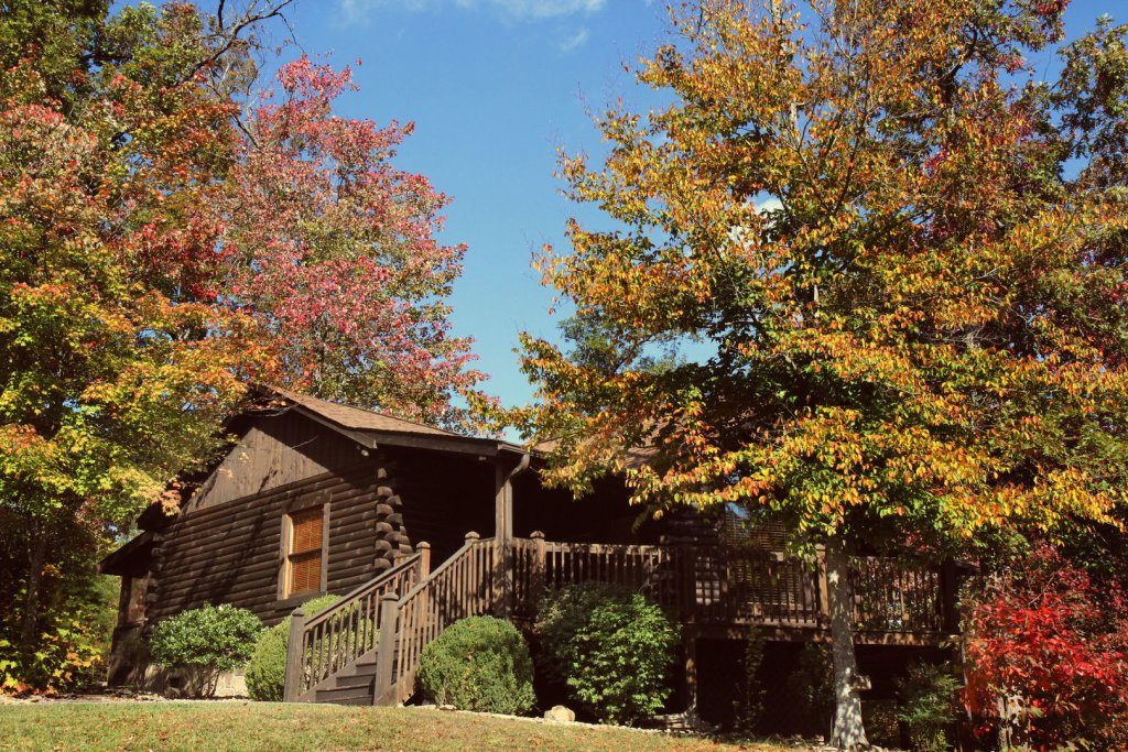 Photo of a Pigeon Forge Cabin named  Robyn's Nest - This is the second photo in the set.