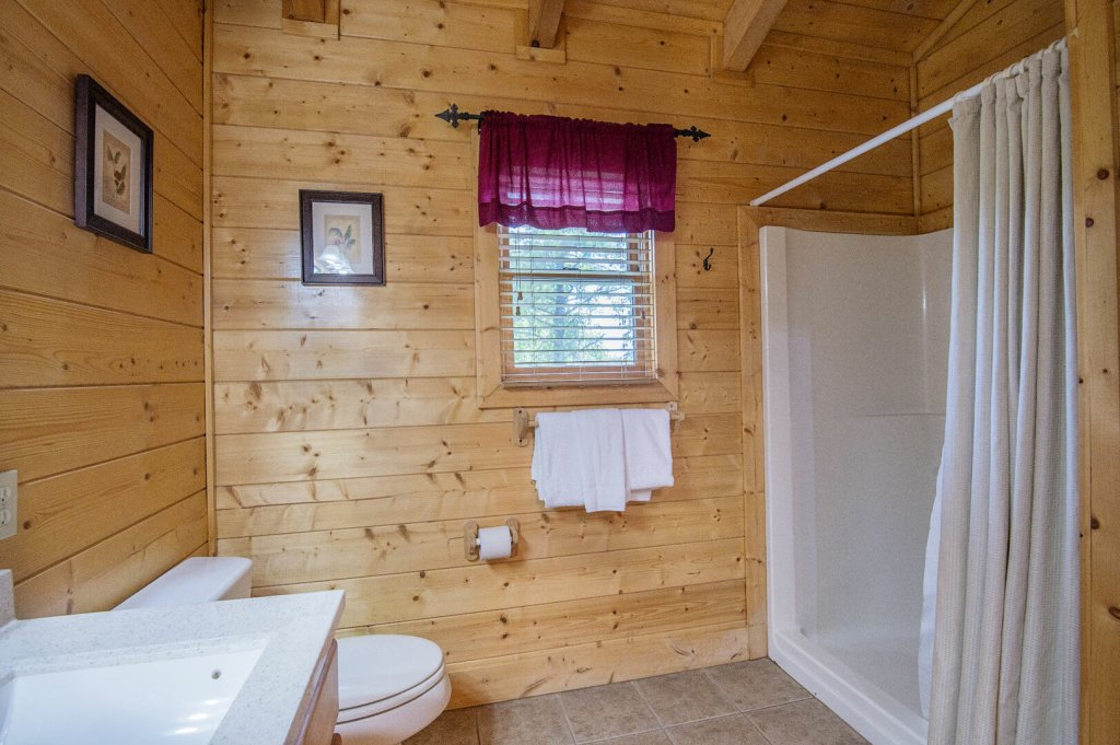 Photo of a Sevierville Cabin named  Mountain Majesty - This is the forty-first photo in the set.