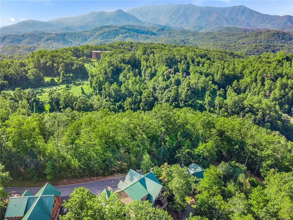 Photo of a Gatlinburg Cabin named Bear Elegance - This is the forty-fourth photo in the set.