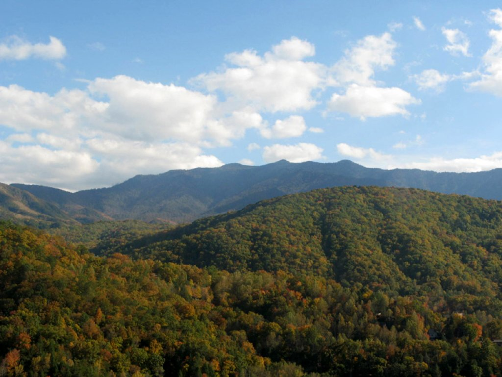 Photo of a Gatlinburg Cabin named Bear's Eye View - This is the forty-third photo in the set.