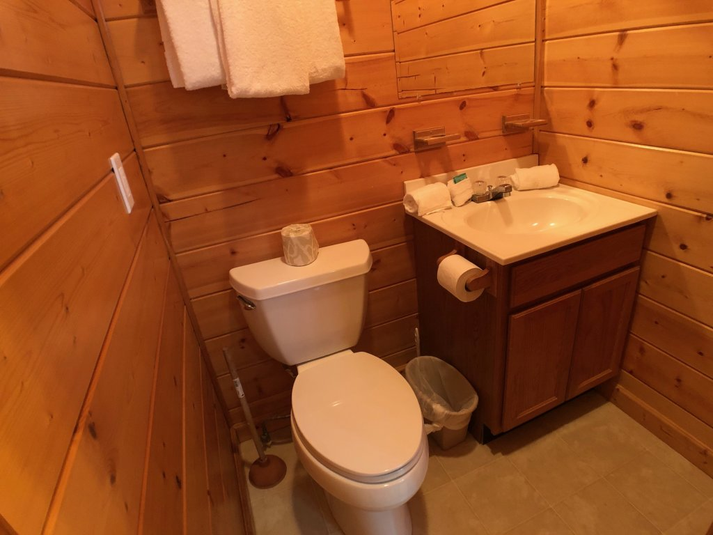 Photo of a Pigeon Forge Cabin named Out On A Limb - This is the twenty-second photo in the set.