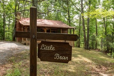 1 Bedroom, 1 Bath Value Cabin For Four, Semi-secluded In A Resort Setting.