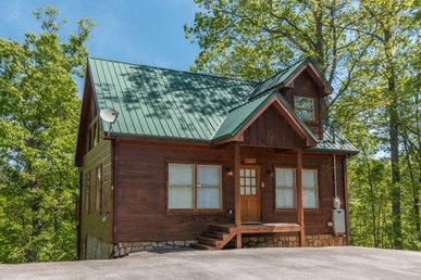 1 Bedroom, 2 Bath, Pet-friendly Deluxe Cabin For 8 Perfect For Families.