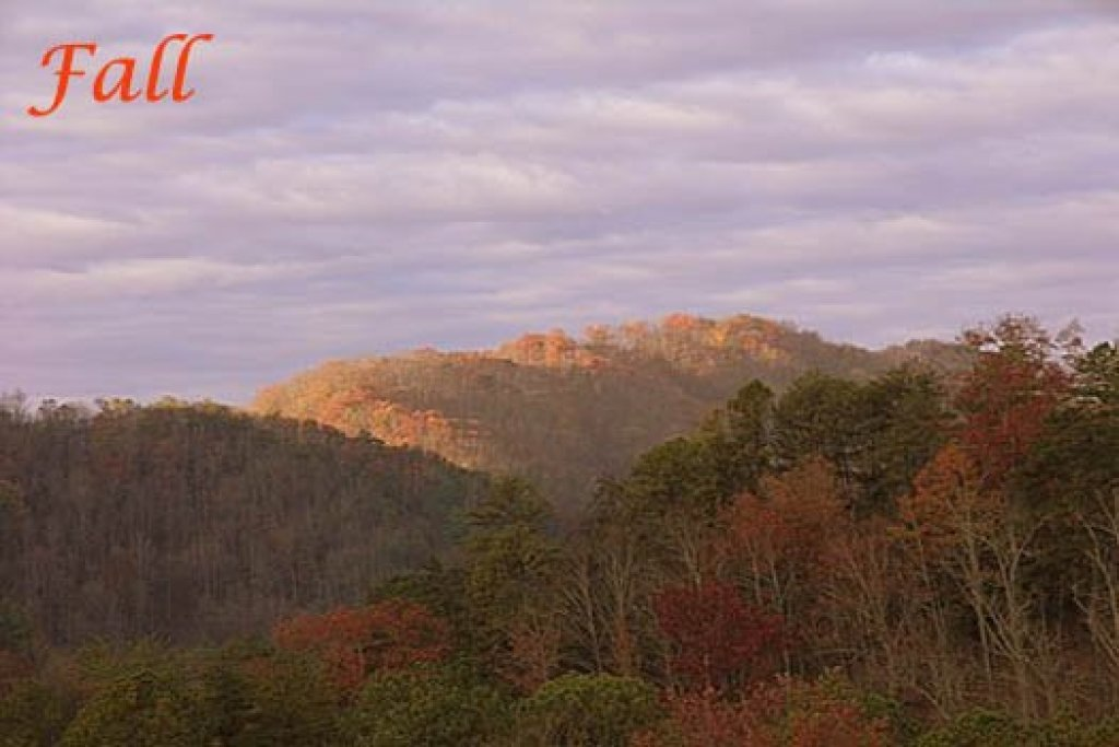 Photo of a Sevierville Cabin named R & R Hideaway - This is the twenty-sixth photo in the set.