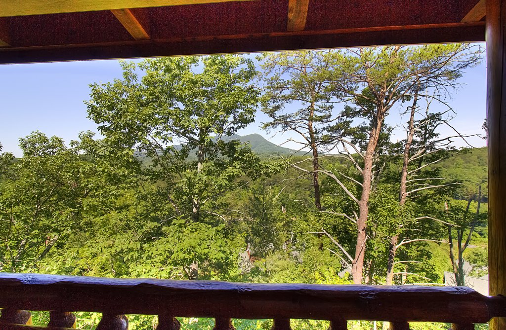 Photo of a Sevierville Cabin named Incredible Vibes & Views  #204 - This is the forty-seventh photo in the set.
