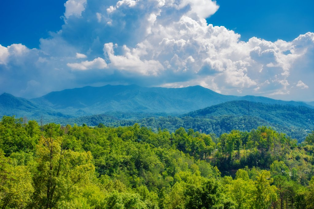 Photo of a Gatlinburg Cabin named Million Dollar View - This is the sixth photo in the set.