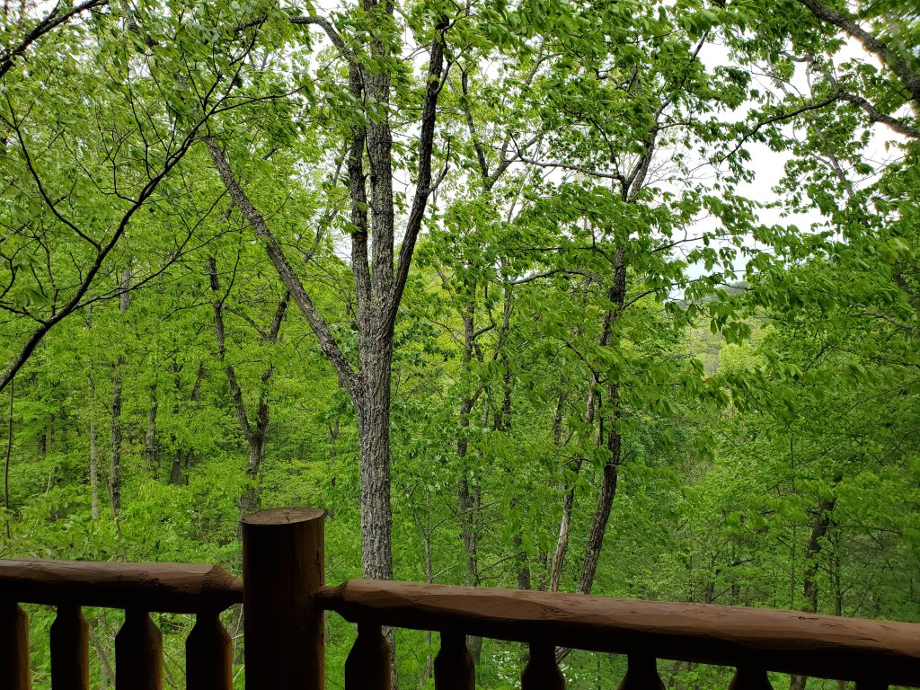 Photo of a Sevierville Cabin named Smoky Pool Paradise #1854 - This is the fifty-third photo in the set.
