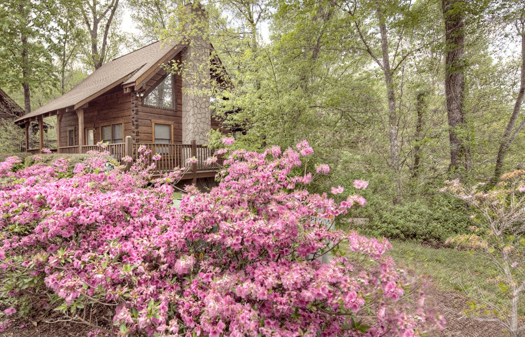 Photo of a Pigeon Forge Cabin named  Savage Loft (was Sweet Serenity) - This is the second photo in the set.