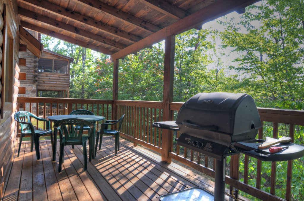 Photo of a Pigeon Forge Cabin named  Palmetto Place - This is the ninth photo in the set.