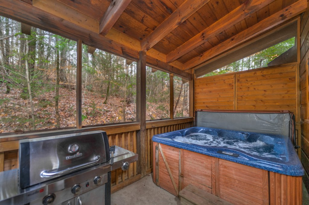 Photo of a Pigeon Forge Cabin named  Eagle's View - This is the twelfth photo in the set.