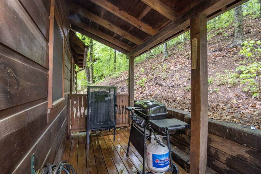 Photo of a Pigeon Forge Cabin named Er96 Squirrel's Leap - This is the fourteenth photo in the set.